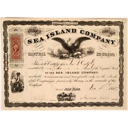 Sea Island Company Stock with vignette of Slaves Picking Cotton and Signed by Alfred Ely  (119412)