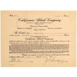 California Alkali Company Stock Certificate  (106707)