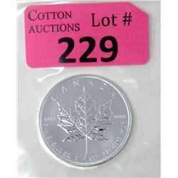 1 Oz Canada .9999 Silver Maple Leaf Coin