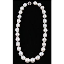 South Sea White Pearl 14K Gold Necklace - 16mm