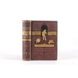 Western Wilds J.H. Beadle Illustrated 1st Ed 1877