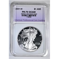 2001-W AM SILVER EAGLE APCG PERFECT GEM PROOF DCAM