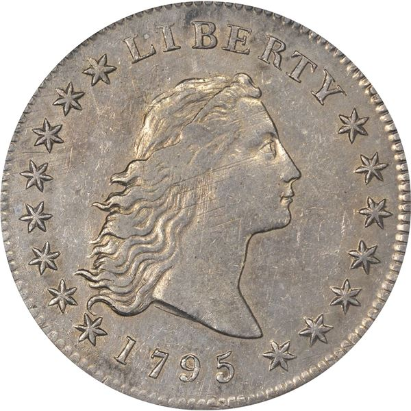 1795 Flowing Hair $1. B-6, BB-25. 3 Leaves. Rarity-3. AU-50 PCGS.
