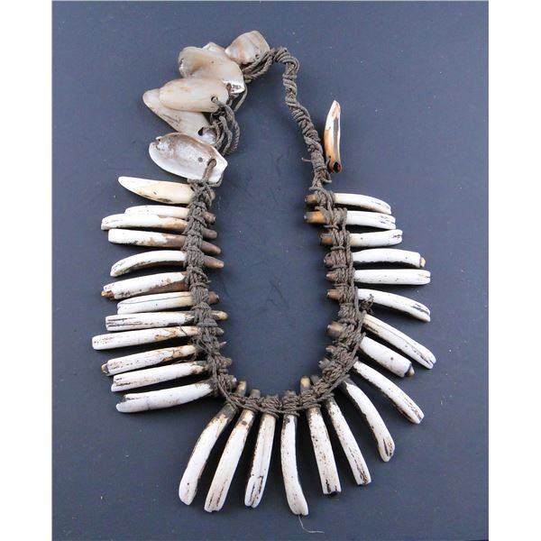 Pig Teeth Necklaces, Armband
