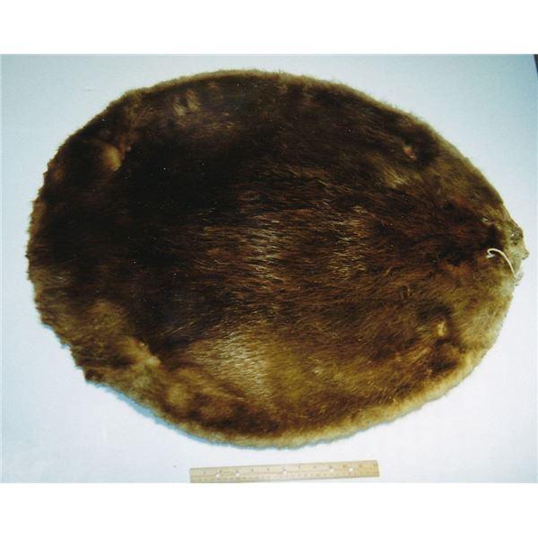 """Made Beaver"" Ex Detroit Money Museum"