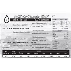 GMAR Powerplay H367