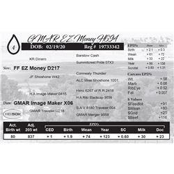 GMAR EZ Money H694