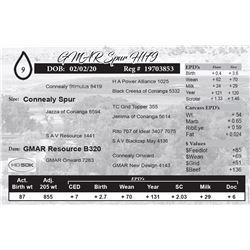 GMAR Spur H179