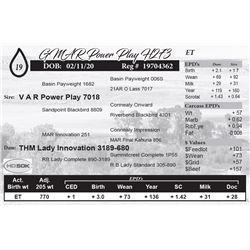 GMAR Power Play H273