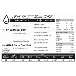 GMAR EZ Money H402