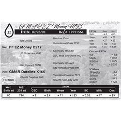 GMAR EZ Money H793
