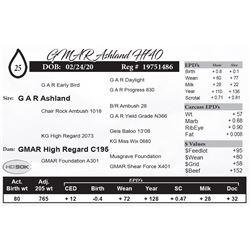 GMAR Ashland H740