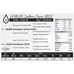 GMAR Southern Charm H225