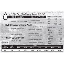 GMAR Southern Charm H205