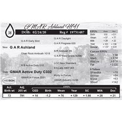 GMAR Ashland H741