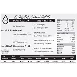 GMAR Ashland H746