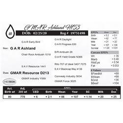 GMAR Ashland H753