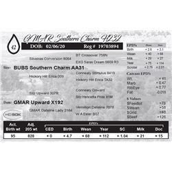 GMAR Southern Charm H232