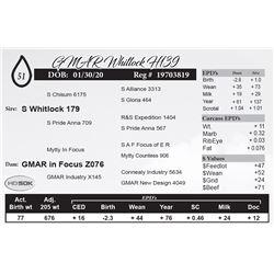 GMAR Whitlock H139