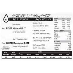 GMAR EZ Money H452