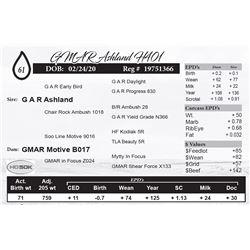 GMAR Ashland H401