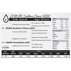 GMAR Southern Charm H384