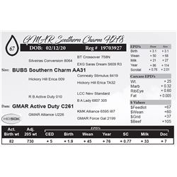 GMAR Southern Charm H278