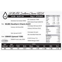GMAR Southern Charm H234