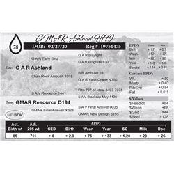 GMAR Ashland H779