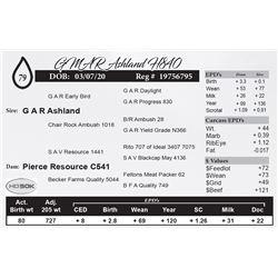 GMAR Ashland H840