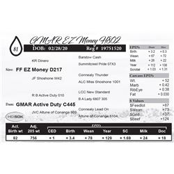 GMAR EZ Money H802