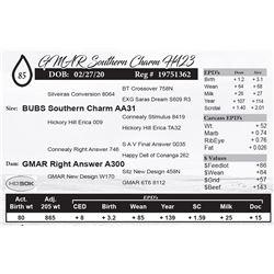 GMAR Southern Charm H423