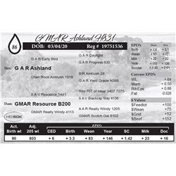 GMAR Ashland H831