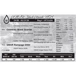 GMAR Black Granite H724