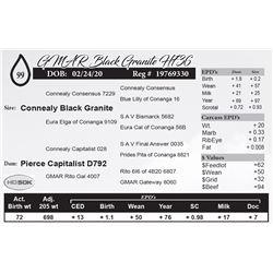 GMAR Black Granite H736