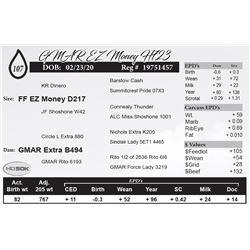 GMAR EZ Money H723