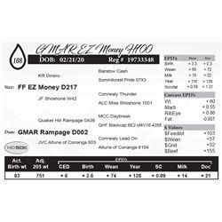 GMAR EZ Money H700