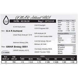GMAR Ashland H801