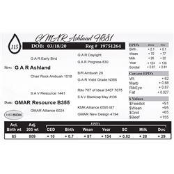 GMAR Ashland H881