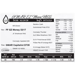 GMAR EZ Money H805