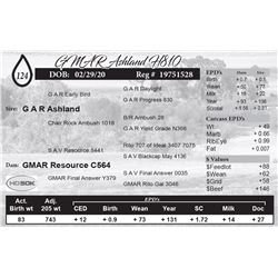 GMAR Ashland H810