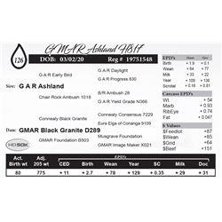 GMAR Ashland H817