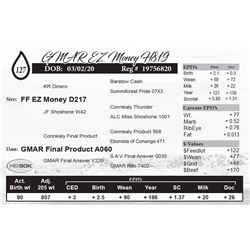 GMAR EZ Money H819