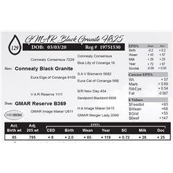 GMAR Black Granite H825