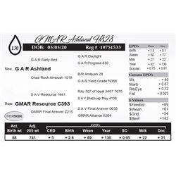 GMAR Ashland H828