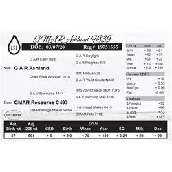 GMAR Ashland H839