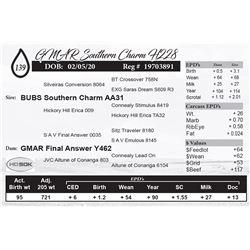 GMAR Southern Charm H228