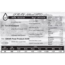 GMAR Ashland H710