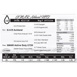 GMAR Ashland H772