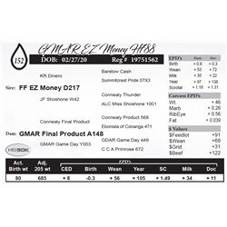 GMAR EZ Money H788